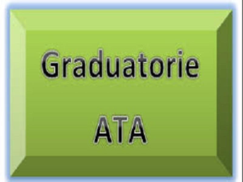 Graduatoria  Istituto Definitiva Individuazione...